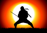 Why You Should Be Your Own Google Analytics Ninja