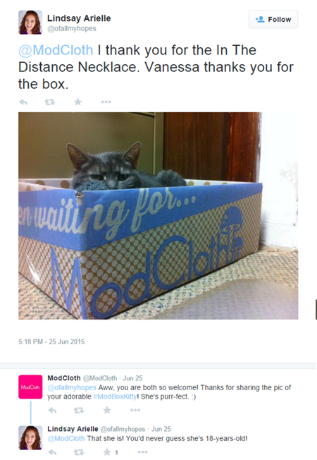 Example of UGC (User Generated Content)